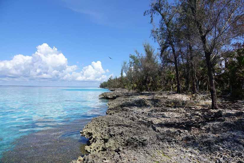 la cueva de los pesce baie des cochons Playa Larga Cuba