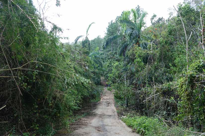 Randonnée proche Trinidad topes de collantes