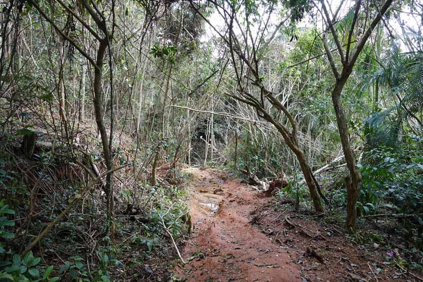 randonnée et cascade topes proche trinidad