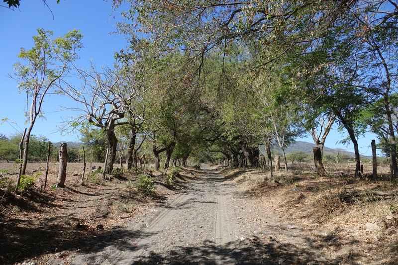 trek ascension Cosiguina