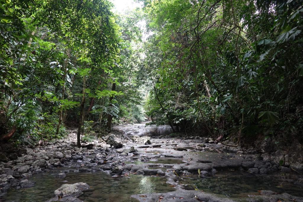 Guatemala : Livingston et les Siete Altares