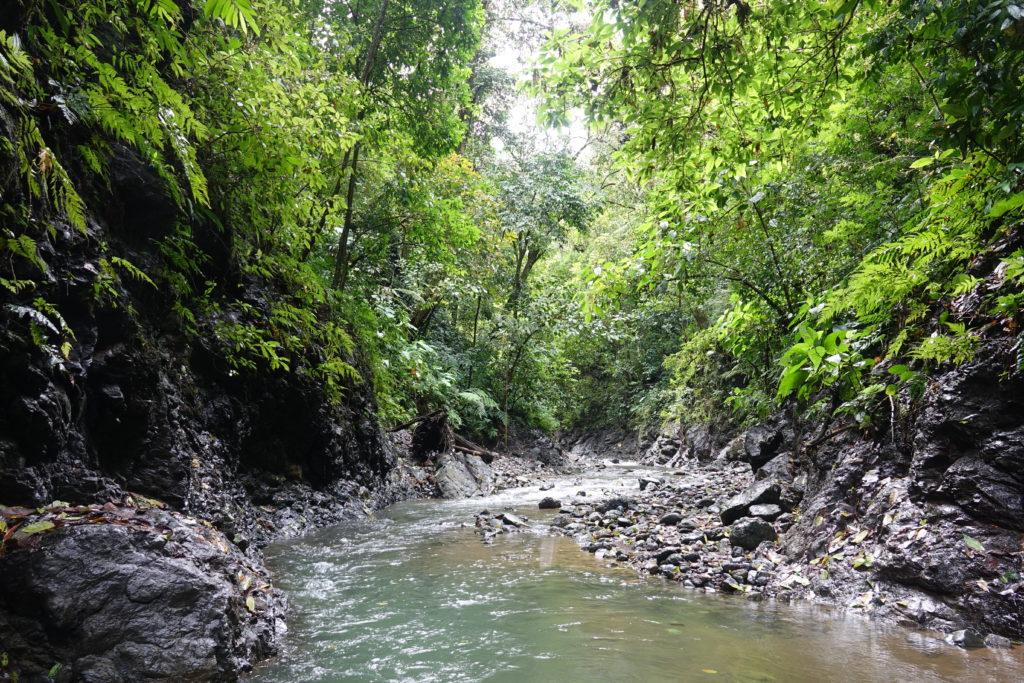 Rio Tigre Costa Rica