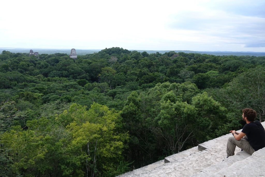 Tikal site archéologique maya guatemala vue