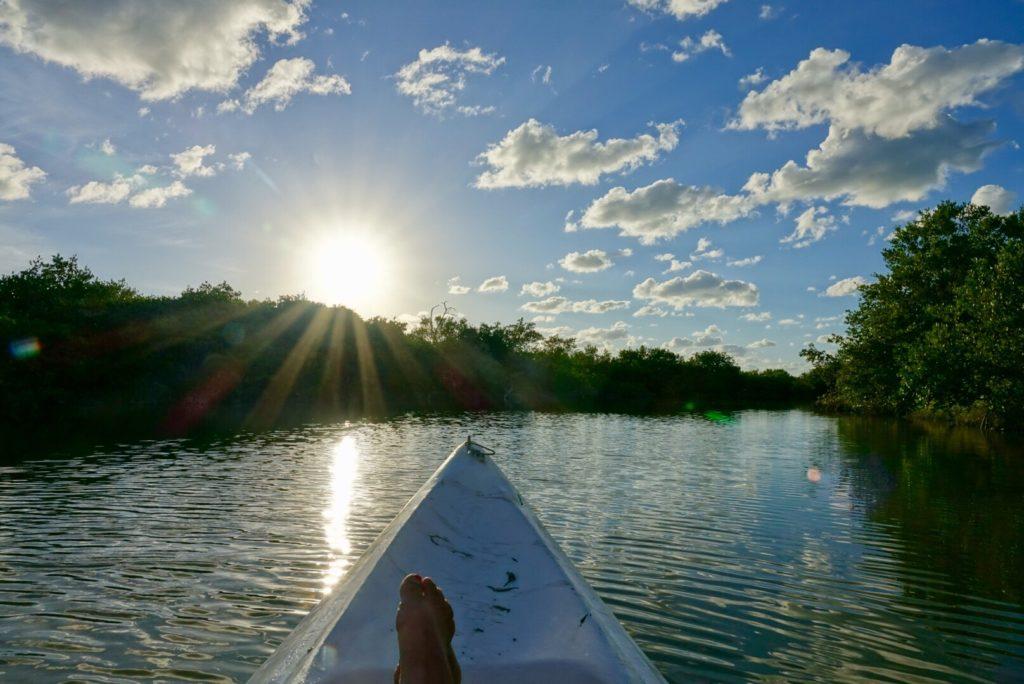 Rio Lagartos en Kayak