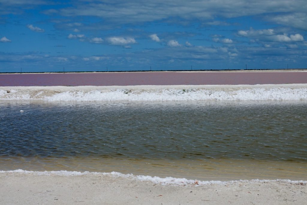 Lac Rose de Las Coloradas