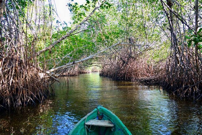 las penitas kayak faune Itinéraire voyage Nicaragua
