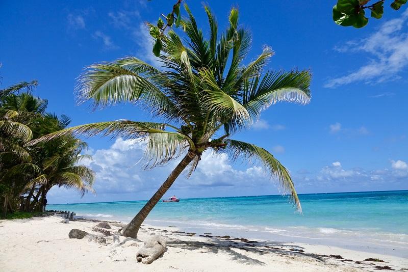 little corn island paradis eau turquoise et palmier