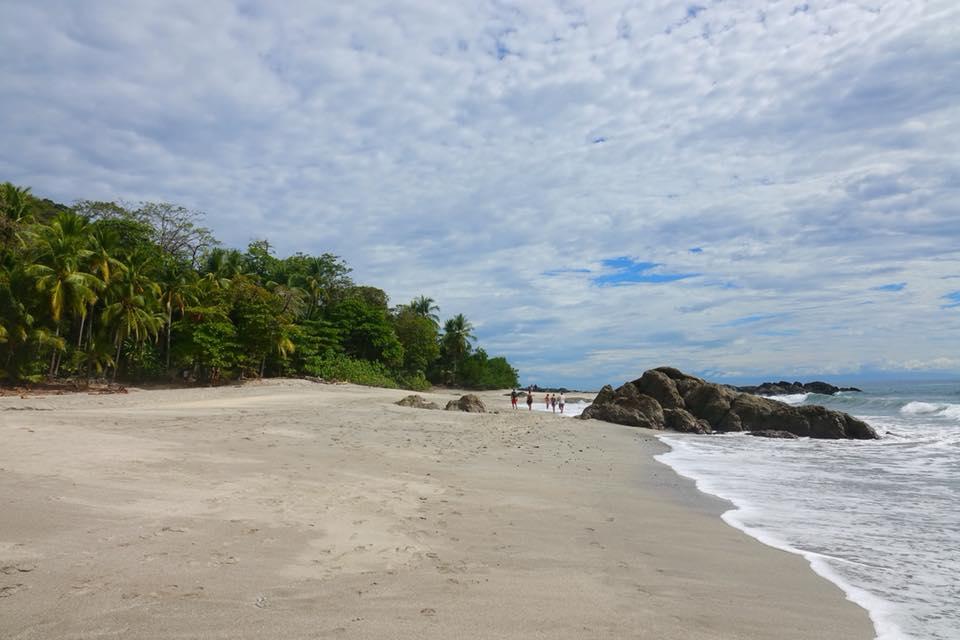 montezuma wild sable blanc
