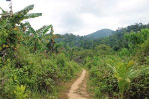 Partir en Asie en dehors des sentiers battus avec Local Xplorer