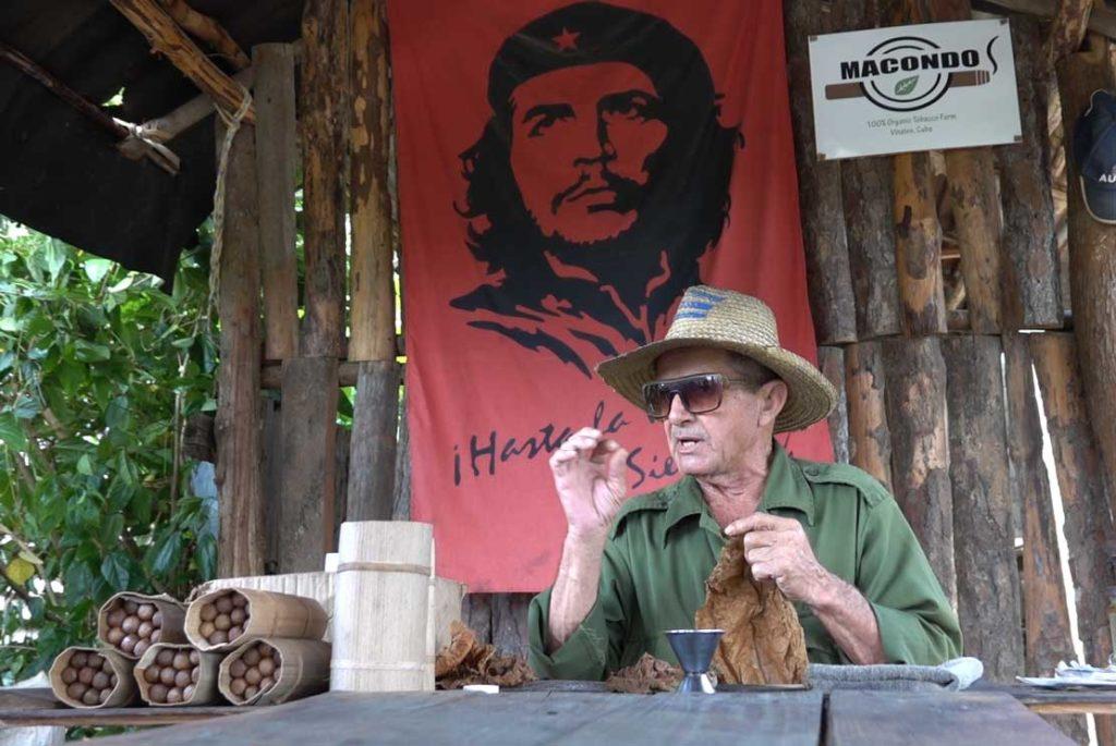 immersion dans une exploitation de tabac cubaine